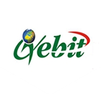 Gebit Investment Limited