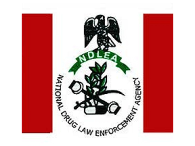 Ndlea recruitment
