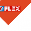 FlexFilms Africa Private Limited