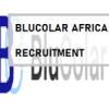 Blucolar Africa Solutions